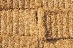 Close on bales stacked Royalty Free Stock Photo