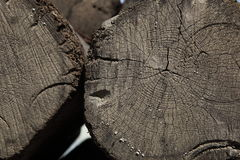 Close cracked grain stump texture wood Stock Photography