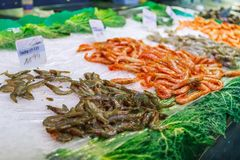 Close fresh raw shrimps on display on ice on fishermen market store shop. Close fresh raw king shrimps on display stall on ice on fishermen market store Royalty Free Stock Photography