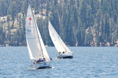 Close-hauled in the High Sierra Regatta Royalty Free Stock Photos