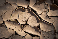 Close image of cracked mud Stock Image