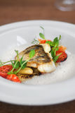 Close image of fish on dish with shrimps in restaurant. Image of tasty fish served in restaurant Royalty Free Stock Photo