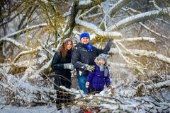 Close-knit, cheerful family in the winter wood royalty free stock images