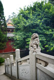 Close look of stone lion on balustrade before ancient Chinese bu Royalty Free Stock Photo