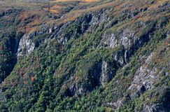 Newfoundland mountain rock formation and vegetation stock images