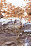 Close macro view chocolate cake grated chocolated background Stock Photo