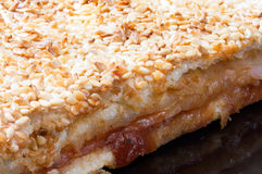 Close macro view of pizza with sesame on the top Royalty Free Stock Images