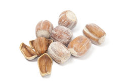 Close and open hazelnuts. Hazelnuts on a white background Royalty Free Stock Photos