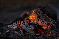 Close Photo of Firewood Burning Royalty Free Stock Photography