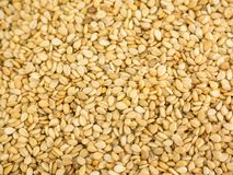 Close photo of Sesame seeds, background made of sesame seeds.  stock images