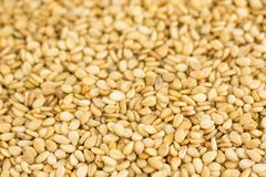 Close photo of Sesame seeds, background made of sesame seeds.  stock photo