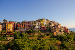 Close picture of Corniglia Stock Photos