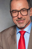 Close portrait of bearded mature businessman wearing glasses Stock Image