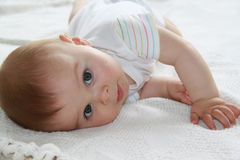 Close portrait of a cute little boy, looking at the camera Stock Image