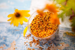 Close shot of bee pollen in plastic glass. On the table stock photo