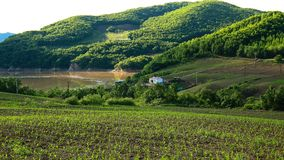 Close shot of a  charming idyllic lush valley. Which is photographed on the way to sandao forestry station ,Heilongjiang province , China Stock Photos
