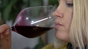 Close shot of expectant mother making a small sip of red wine stock video footage