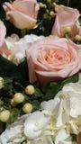 Close Shot of Flowers stock photos