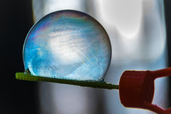 Close shot of soap bubble royalty free stock photo