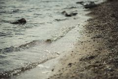 A close shot of water on a lake shore, with details of bubbles and little stones on the sand.  Royalty Free Stock Photo