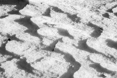 close snow texture up white Royaltyfri Foto
