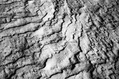 close snow texture up white Royaltyfria Bilder