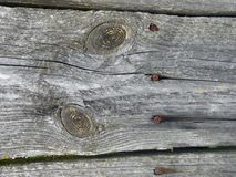 Texture of the board with two oval patterns and four nails. Close to wooden boards. The texture of the board with two oval patterns and four nails. Cracks from royalty free stock image