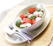 Close of tomato and mozarella in dish Royalty Free Stock Photo