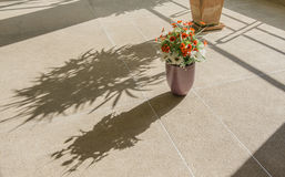 Artificial flowers in pots and shadows on brown floor rough Royalty Free Stock Photos