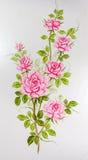 Close up às rosas cor-de-rosa bonitas que pintam no fundo da superfície do vestuário Imagem de Stock
