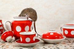 Close-up één rat beklimt in theepot dichtbij rode koppen op countertop bij keuken in een flatgebouw stock foto