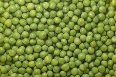 Close-up зеленых горохов Стоковые Изображения