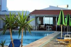Close-up пальмы На заднем плане, бассейн, кровати солнца и кафе Стоковые Фотографии RF