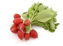 Close-up 1 van groenten Stock Afbeelding