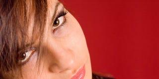 Close up Royalty Free Stock Photo