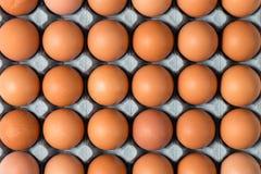 Close up aéreo de ovos da galinha na bandeja para fundos Fotografia de Stock Royalty Free