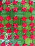Red flowers arrange over green leave Stock Photos