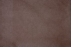 close up of abstract leather texture as background Royalty Free Stock Images