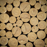 Close up Abstract  round Wooden block background Stock Photography