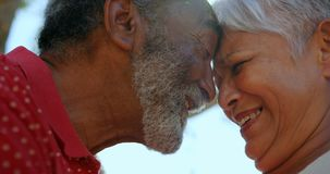 Close-up of active African American senior couple standing face to face in the garden of nursing hom stock video footage
