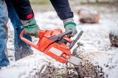 Close-up of active male worker cutting firewood from snowy trees Royalty Free Stock Image