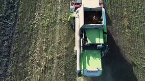 Close-up Aerial view combine harvester collects ripe wheat leaving behind a cloud of dust in a wheat field stock video