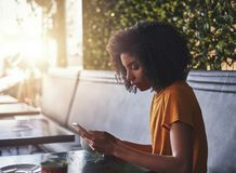 Young woman using mobile phone in cafe stock images
