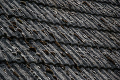 Close up of aged roofing tiles on old house in village. A lot of moss on tiled roof of hovel. Countryside scene Royalty Free Stock Photo