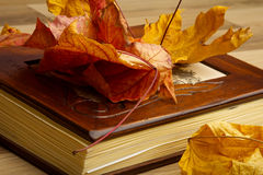 Close up of an album and Autumn leaves. Stock Photos