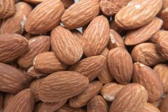 Close up almond in bulk organic food. The almond is a species of tree native to Mediterranean climate regions of the Middle East, from Syria and Turkey to royalty free stock photos