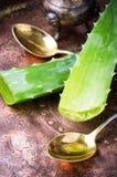 Close-up Aloe Vera leaves Royalty Free Stock Image