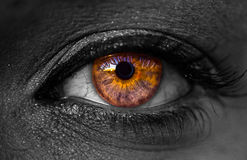 Black and white Skin Spectacular Colorful Eyeball with veins Royalty Free Stock Photos