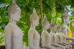 Close up of Ancient Buddha Statue at WAT YAI CHAI MONGKOL, The Historic City of Ayutthaya, Thailand.  Stock Photos