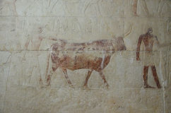 Close-up of the ancient Egyptian fresco Stock Photo